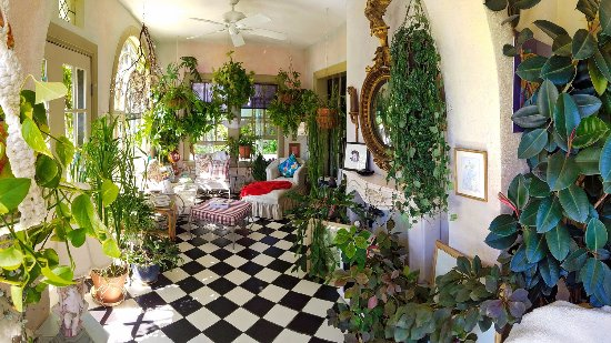 Surgeon's House: Sun room filled with live plants and art.