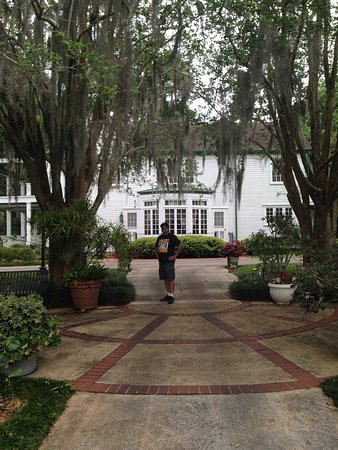 By the gardens photo de harry p leu gardens orlando for Jardines de harry p leu