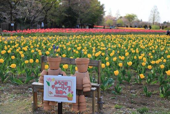 Omiya Hana no Oka Norin Park
