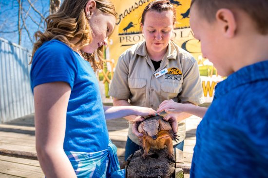 Branson, MO: Unique critters to pet and learn about