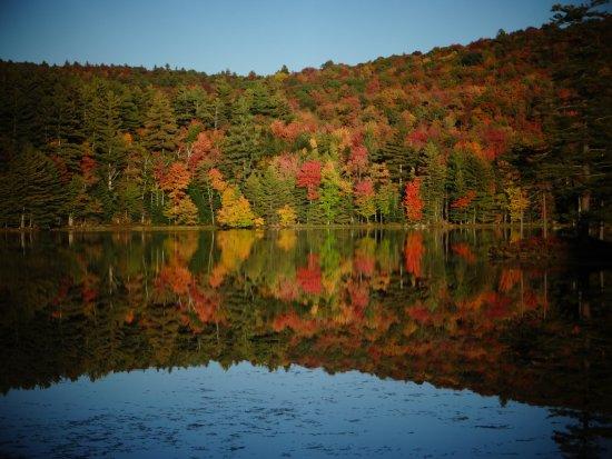 Londonderry, Vermont: Foliage Season