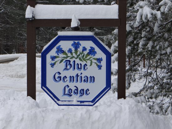 Blue Gentian Lodge: Winter Snowfall