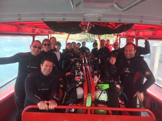 Portsea, Australia: Scuba Culture dive/dine day with RedBoats