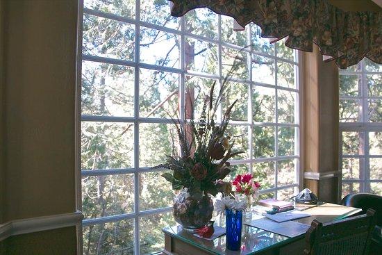 Twain Harte, Καλιφόρνια: Forest view, Mocha room