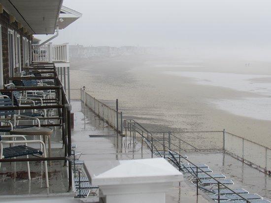 Lafayette's Oceanfront Resort Photo