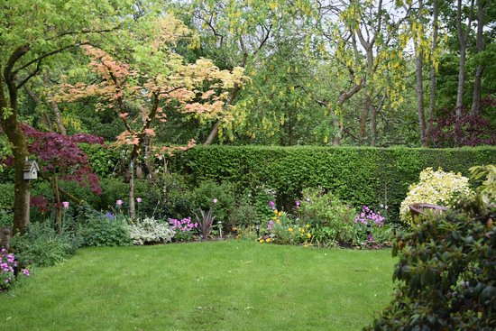 Mena House B&B: Beautiful backyard garden