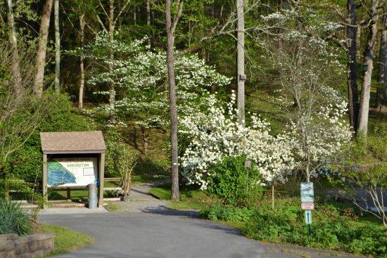Oak Ridge, Tennessee: Trail map