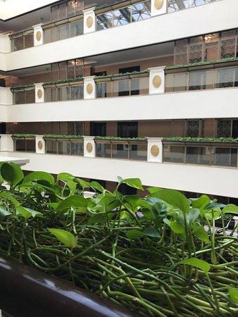 Lotte Hotel Moscow: Завтрак великолепен, вид из номера отличный