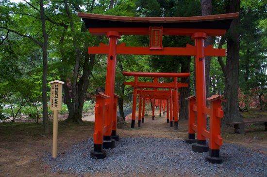 Sukagawa, Japan: тории