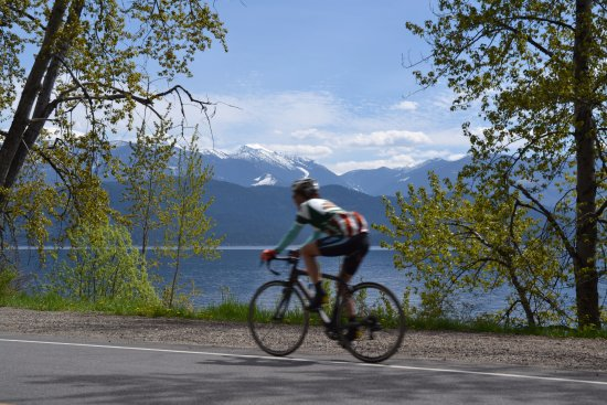 kootenay bicycles One of the best parts of cycling trips is sampling the local flavours all that pedalling means you've earned it tucked away in british columbia's selkirk mountains, the nelson and kootenay.
