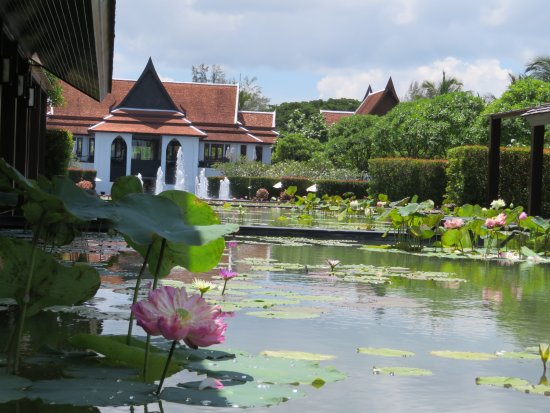 Photo3 Jpg Picture Of Jw Marriott Khao Lak Resort Amp Spa