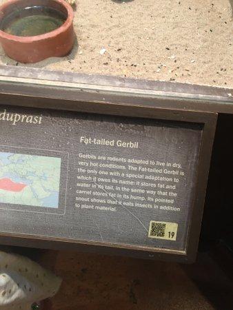 Μουσείο Φυσικής Ιστορίας Κρήτης: photo2.jpg