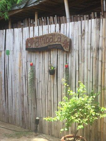 Shambala Restaurant: photo1.jpg