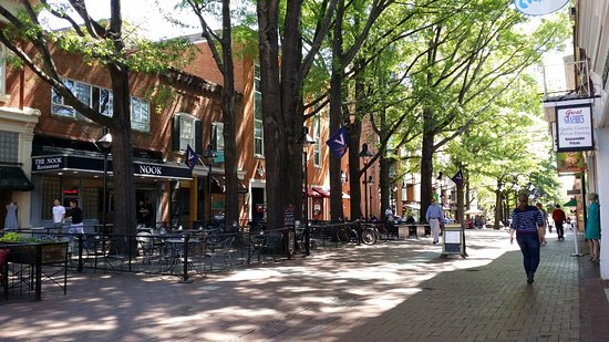 Historic Downtown Mall: Another East Main Street scene.