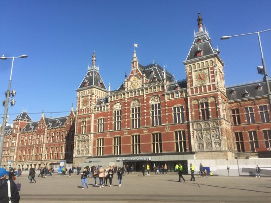 Local Amsterdam Tours Review