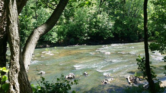 Rivanna Trails: Another river view