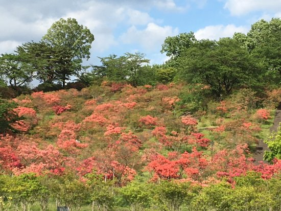 Yaita, Japan: photo1.jpg