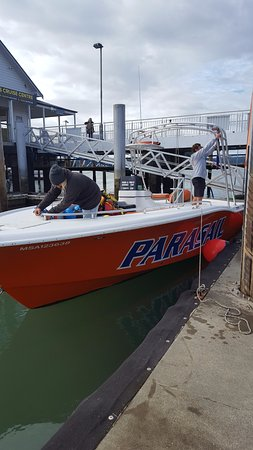 Flying Kiwi Parasail: the crew preparing the boat !