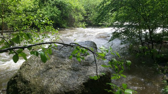 Wintergreen, VA: View of Crabtree Creek (looked like a river that day)
