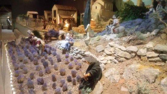 Paradou, França: Récolte de la lavande