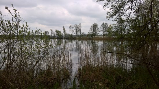 Zarrentin, Duitsland: Blick auf den See