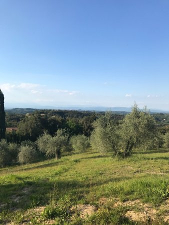 Palaia, Italien: photo3.jpg