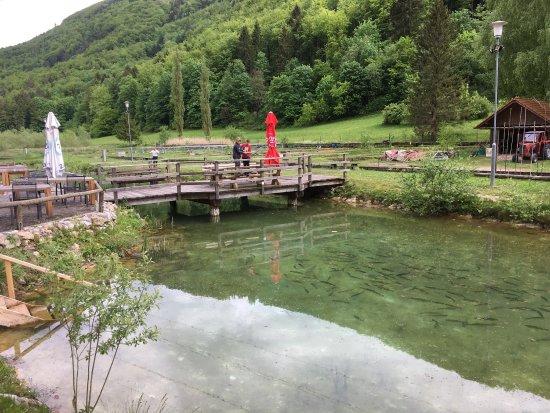 Stranice, Eslovenia: photo1.jpg