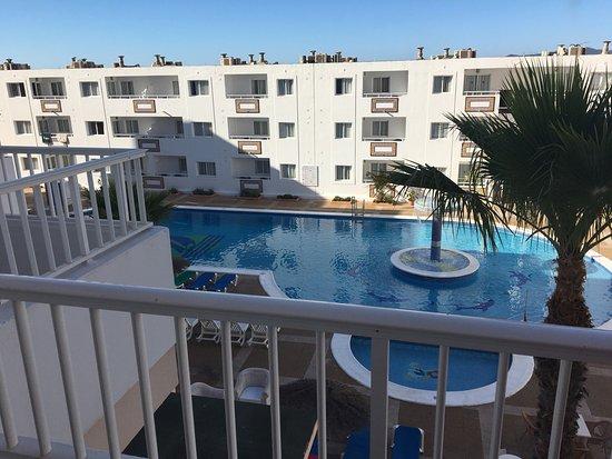 Picture of apartamentos tropical garden ibiza town tripadvisor - Apartamentos tropical garden ...
