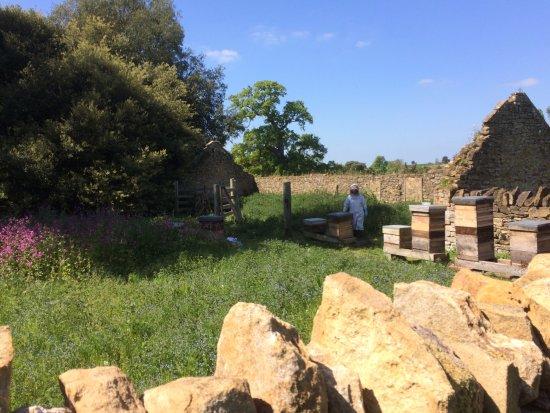 Montacute, UK: Beekeepers in the adjacent ruins