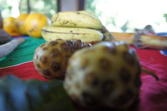 Fruits in season - Picture of Rastafari Indigenous Village, Jamaica