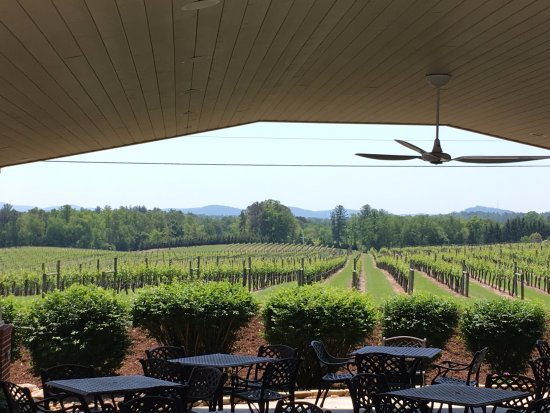 Hendersonville, NC: view from the front patio