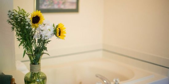 Somerset Inn & Suites: Whirlpool Suite