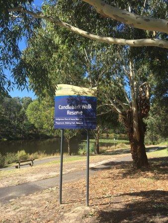 Candlebark Walk Reserve