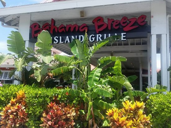 Bahama Breeze: Great fun.