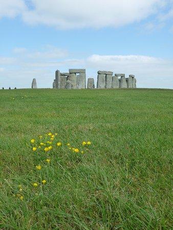 International Friends: Stonehenge!