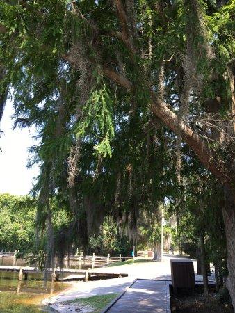 Sebring, FL: photo1.jpg