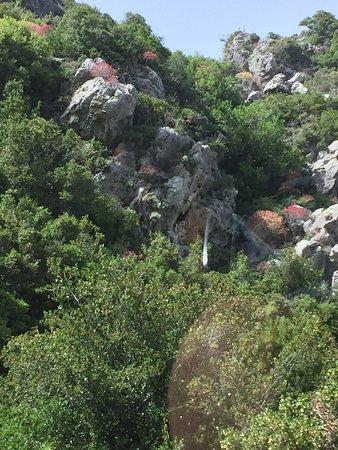 Diakofti, Grecia: photo1.jpg