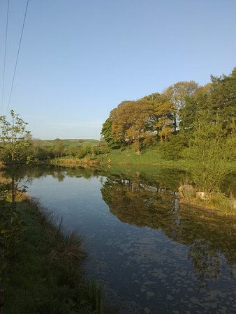Selside, UK: View from lodge