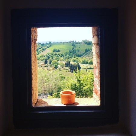 Osteria Passaparola Nell'antico Frantoio: photo0.jpg