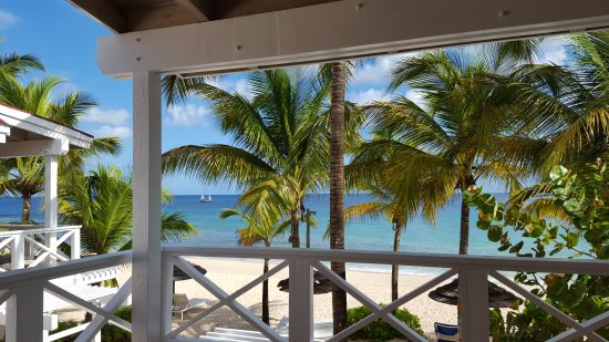Five Islands Village, Antigua: Some of my favorite pics from our Galley Bay trip!