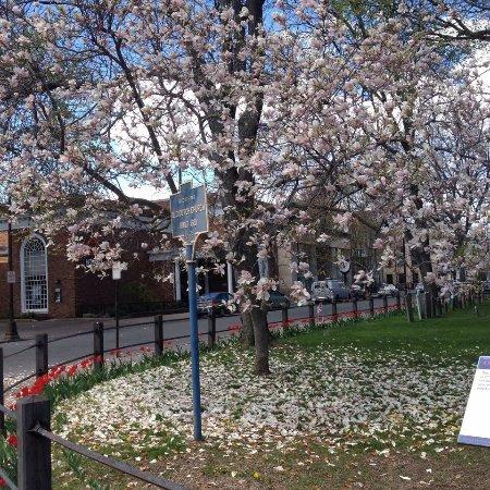 Kingston, NY: photo0.jpg
