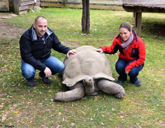 Sorede, Francja: Formule Vip donc nous avons pu aller au plus prés des tortues moments inoubliable
