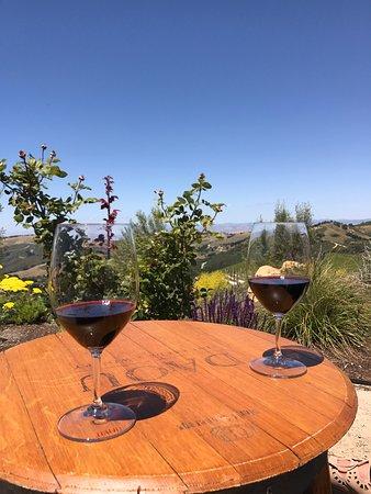 DAOU Vineyards: photo0.jpg