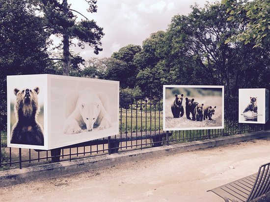 Exposition ours picture of jardin des plantes paris for Expo jardin paris