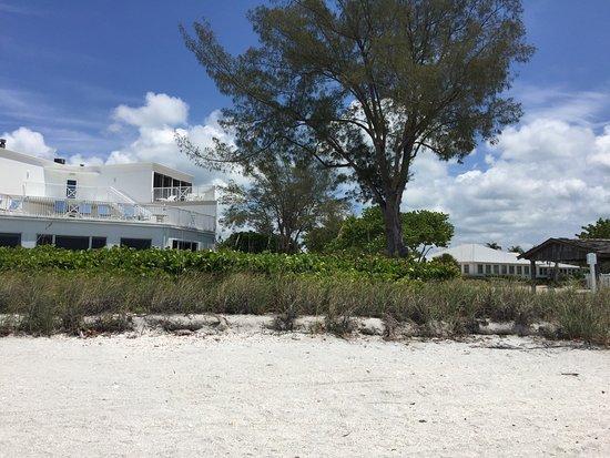 Island Inn: photo6.jpg