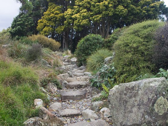 Otari Wiltonu0027s Bush Native Botanic Garden: Decorative Stone Path At Otari  Garden. You