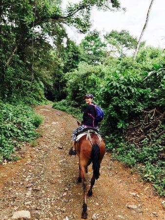 Dominical, كوستاريكا: photo0.jpg