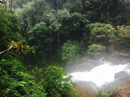 Dominical, كوستاريكا: photo2.jpg