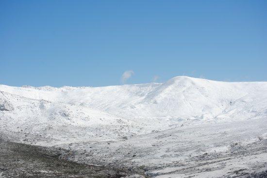 Foto de Snowy Mountains