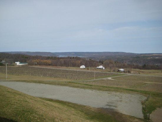 Hammondsport, NY: View from Winery